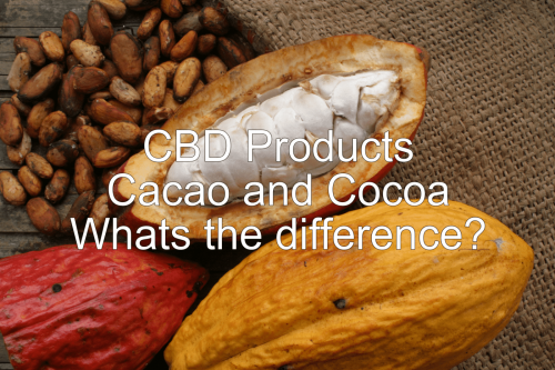 CBD Cacao or Cocoa Products.